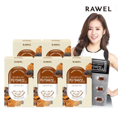RAWEL 로엘 차가버섯 듬뿍 차가버섯정 5박스 (5개월분)